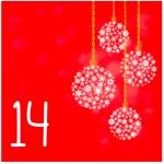 Nr_14