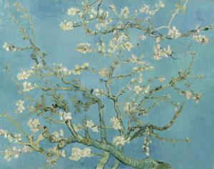 1024px-Vincent_van_Gogh_-_Almond_blossom_-_Google_Art_Project