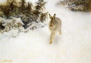 Bruno_Liljefors_-_Winter_Hare